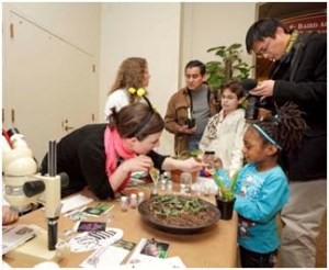 Smithsonian Gardens Education Internship