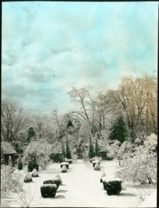 The winter months are the perfect time to take stock of the condition of your garden. Bonaire, West Orange, New Jersey, circa 1930. Ellen Biddle Shipman, landscape architect. Collection of the Archives of American Gardens.