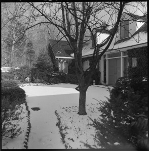 Winston Garden, Far Hills, New Jersey, circa 1965. Collection of the Archives of American Gardens.