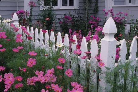 Ken Druse Garden Photography Collection