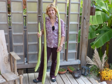 Janet with Guinea Bean gourds.