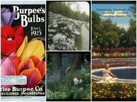 Collage of Archives of American Gardens materials