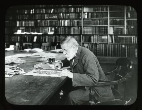 Sargent in the Library at the Arnold Arboretum examining Quercus herbarium specimens.