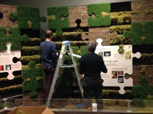 Staff working on the green wall.