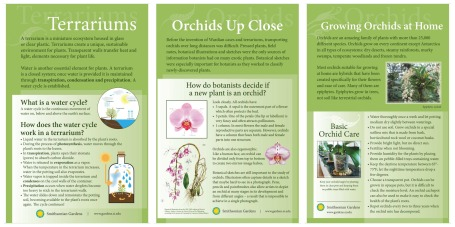 The Orchid Family Day Panels in final form.
