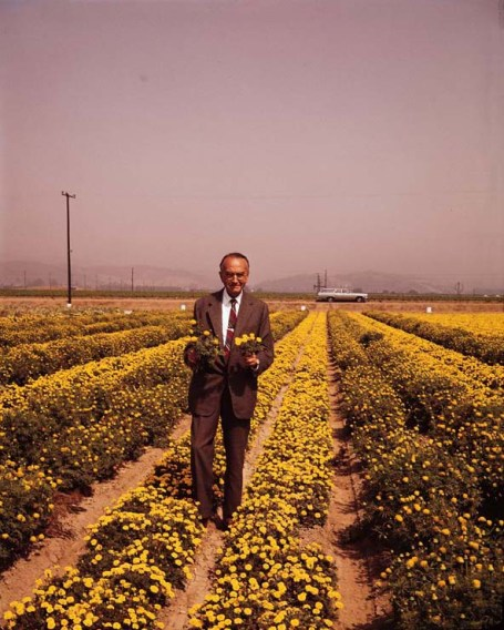 David Burpee in a field of marigolds. Photo courtesy of Burpee Gardens