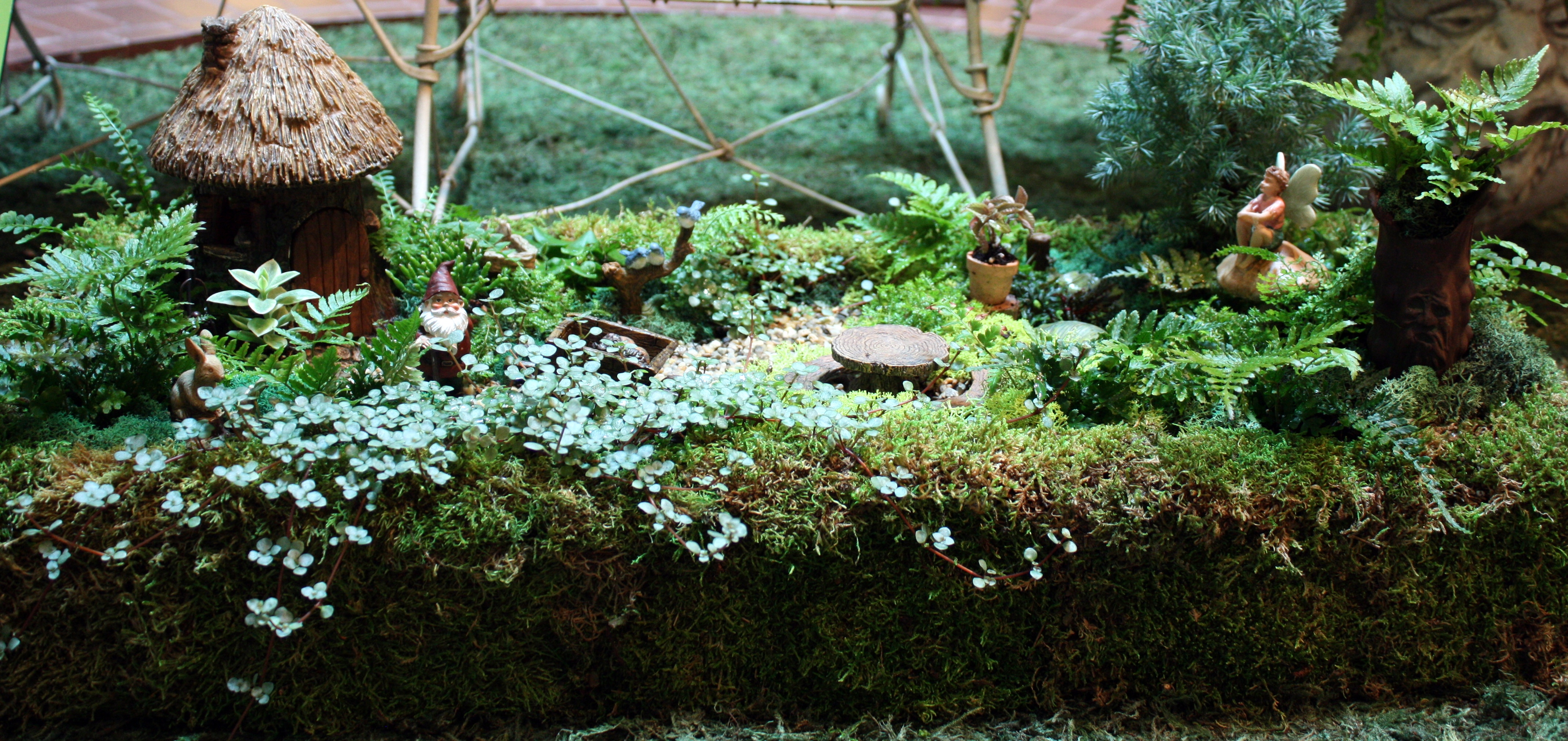 Fairy Garden Ideas For Small Spaces plants in the ripley center: design for small spaces | smithsonian