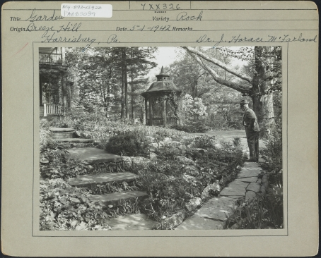 McFarland looking over the gardens at his home.