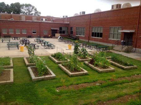 raised garden beds and picnic tables next to a school